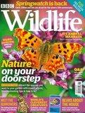 BBC Wildlife Magazine_